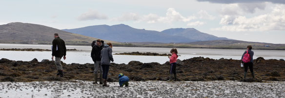 Seaweed Hunt, North Uist Outer Hebrides