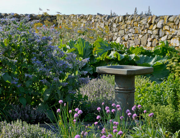 Croft Garden Cottage herb garden