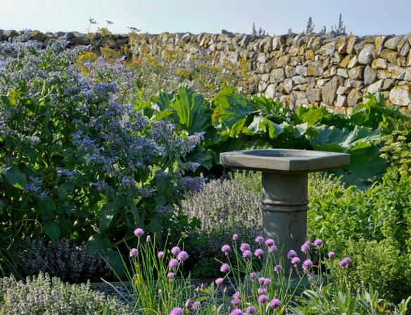Croft Garden Cottage herb garden