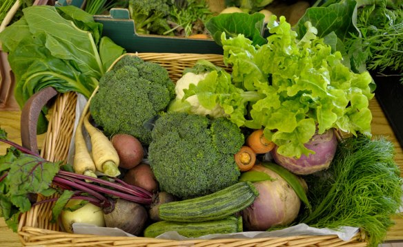 North Uist Show - Collection Vegetables