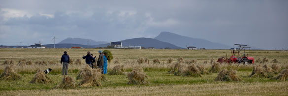 Harvest South Uist