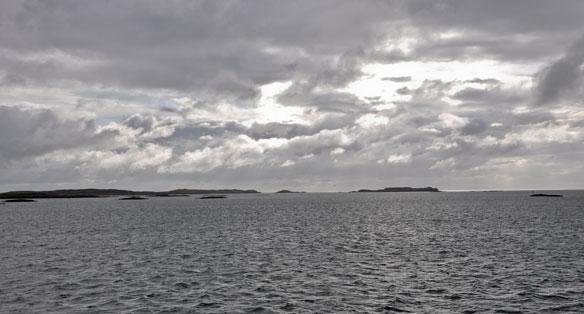 Swan Morning Outer Hebrides winter sky sea