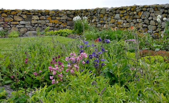 Ardivachar Cottage Garden June 2013