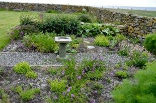 Herb Garden June 2013