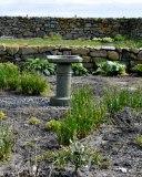 Herb Garden May 2013