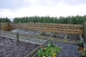 Cold frames protected by new fence