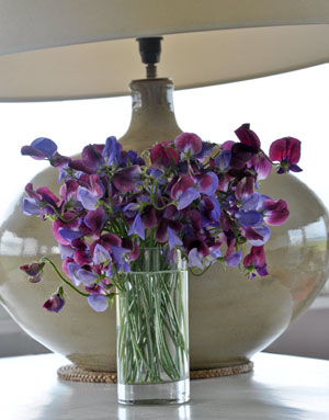 Sweet Peas Venetian Mix