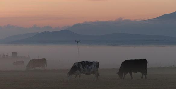 Ardivachar-October morning