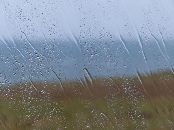 Novemeber rain