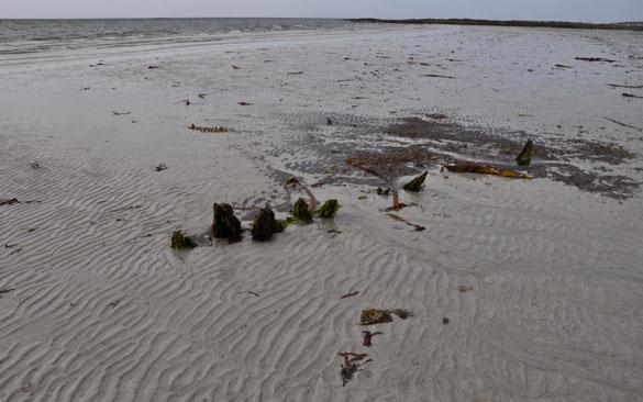 shipwreck Ardivachar beach