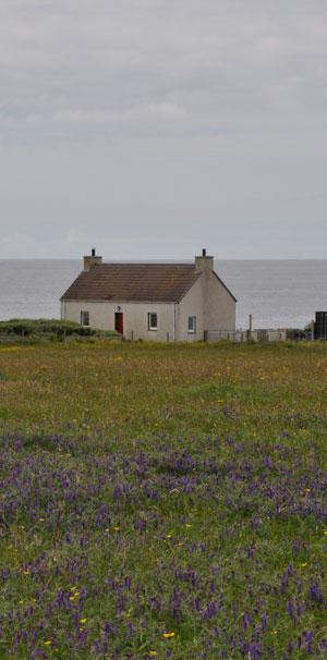 Croft Garden Cottage 2016
