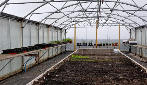 keder green house