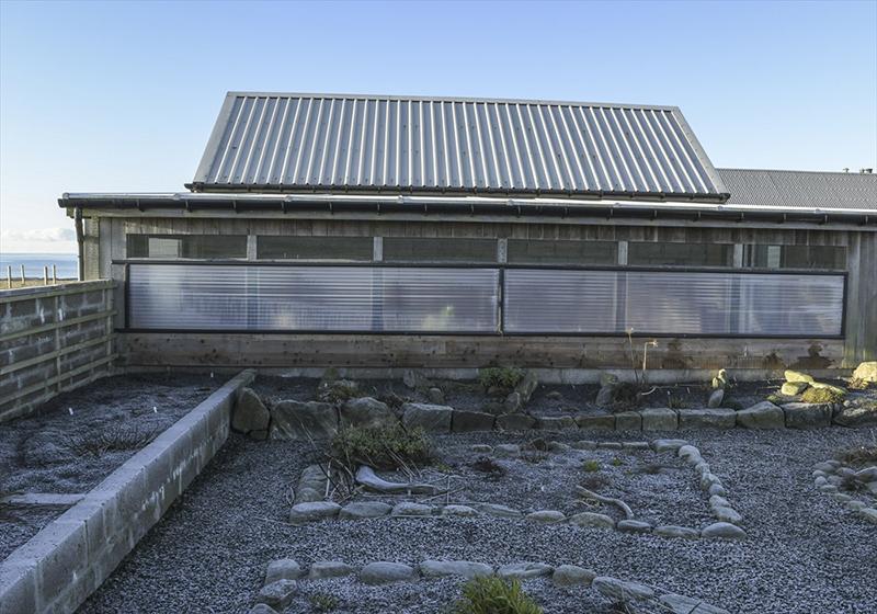 inbetween and lean-to garden